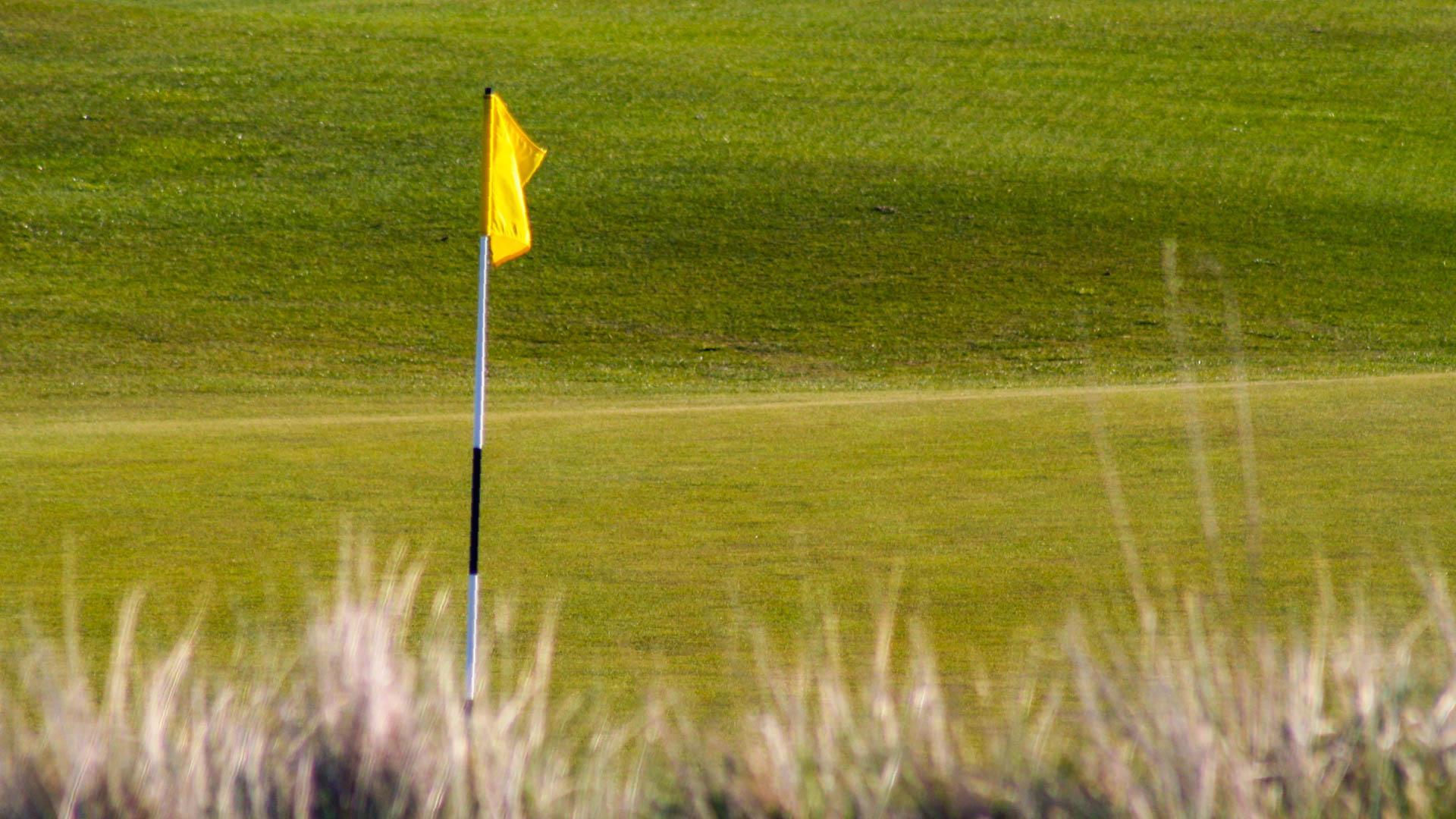 Golf Professionals